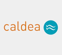 Caldea - SuiteUp - Partner Netsuite