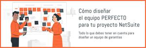 NetSuite Project Team - SuiteUp